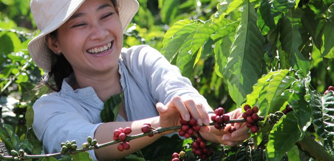 Female coffee farmer
